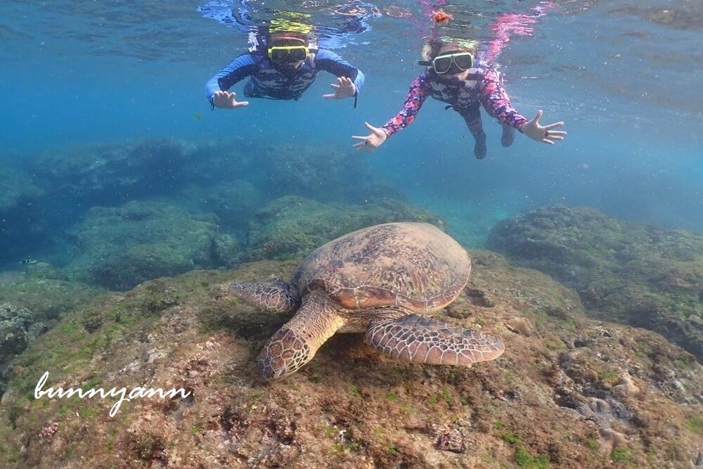 網站近期文章:屏東小琉球浮潛&獨木舟這樣玩,和海龜共游好開心,花瓶岩超美麗